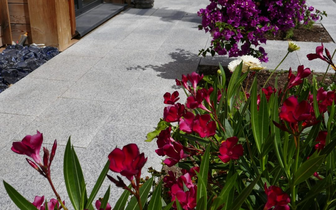 The robustness of Alto Douro granite